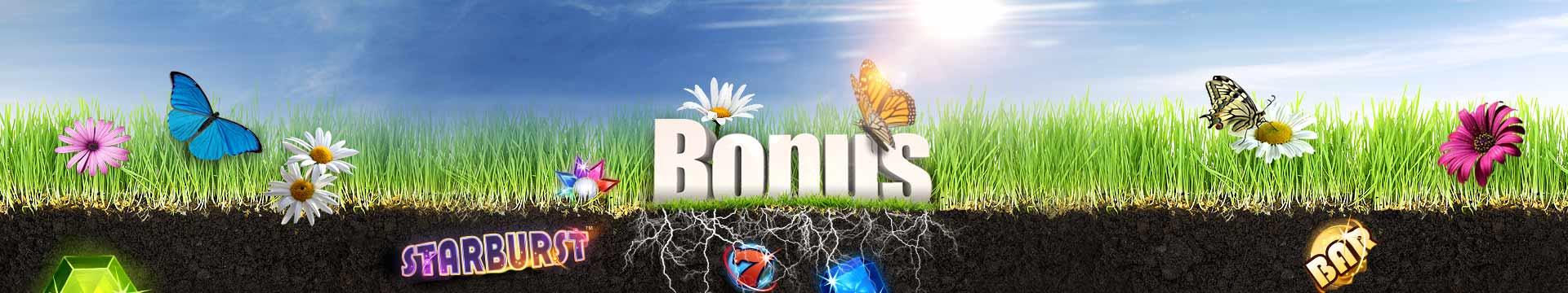 Banner slide - Welcome Spring
